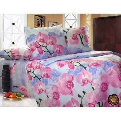 Комплект постельного белья Двуспальный, Бязь-100% хлопок (2-х сп.ЕТ0215)