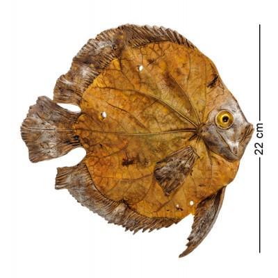 "Фигурка ""Рыбка"", 22x2,5x22 см., полистоун"